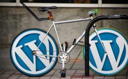 velocità wordpress
